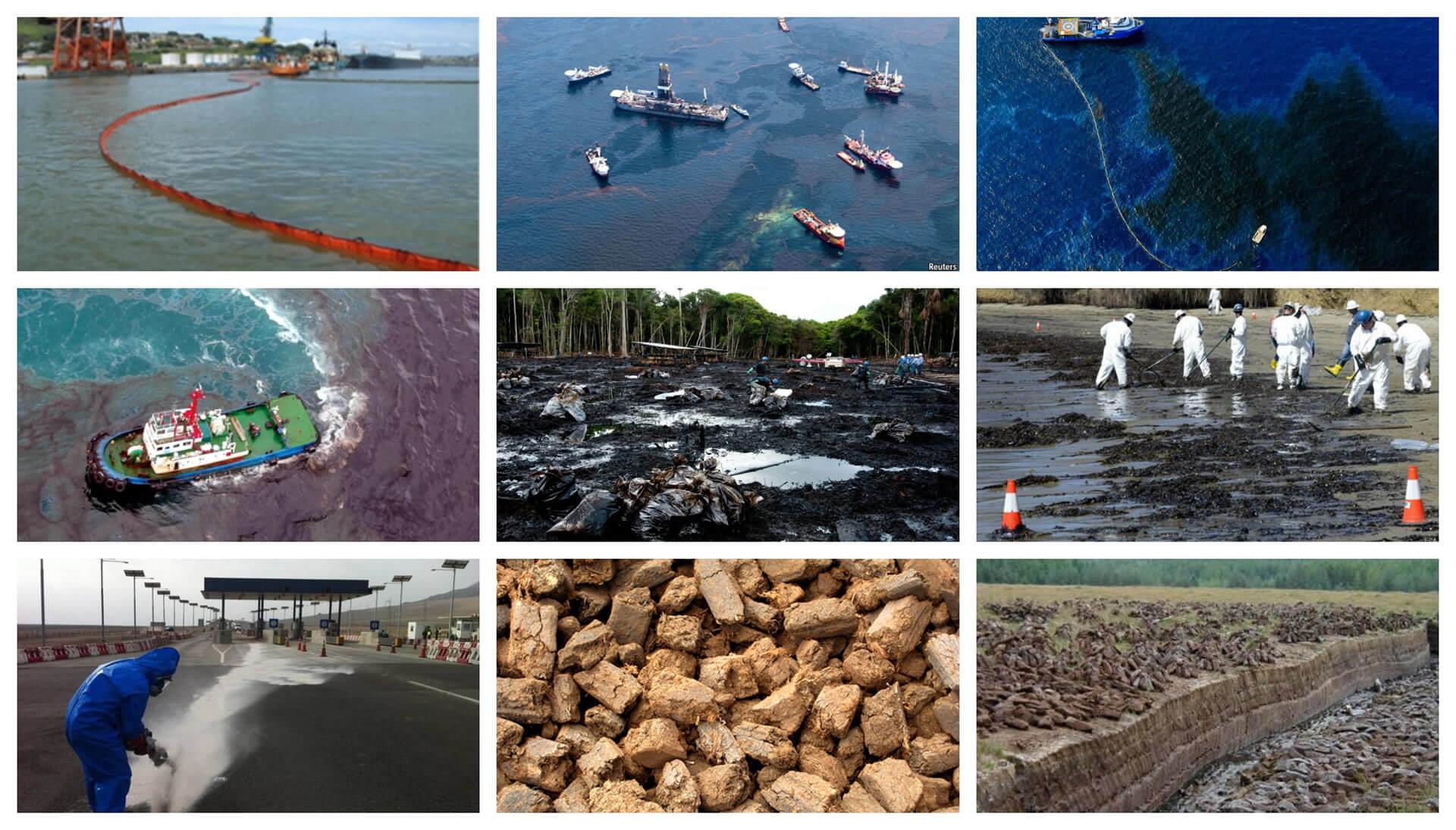 medio-ambiente-collage